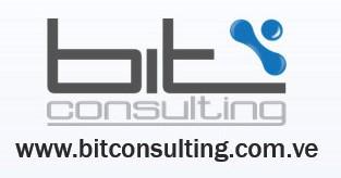 Bit consulting